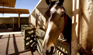 Explora Atacama Hotel