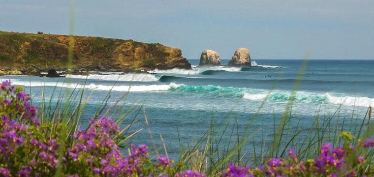 Punta De Lobos In Chile My Guide Chile