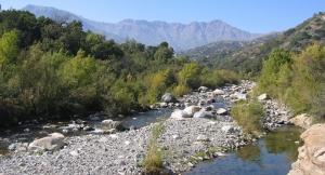 Rio Clarillo National Reserve