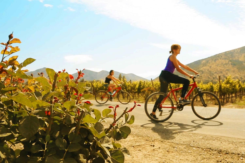 Santiago: Santa Rita Winery Tour with Tastings and Bike Ride