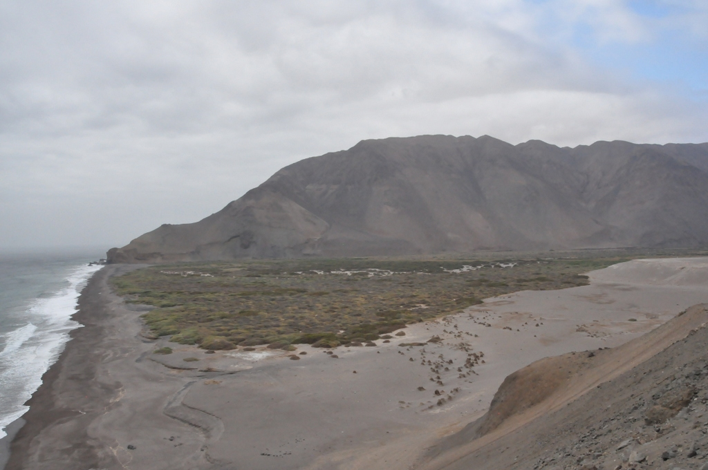 Shrimp Valley
