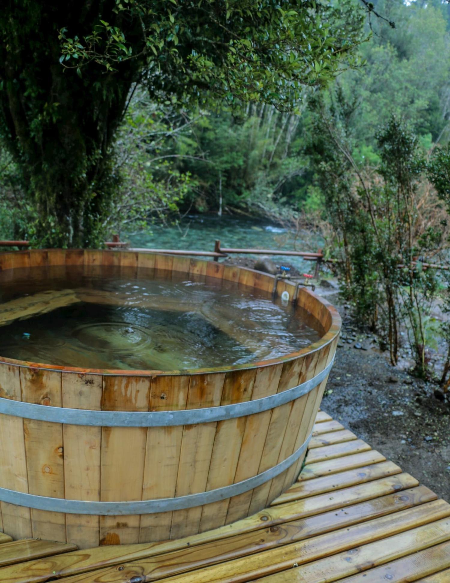 Termas de Aguas Calientes Hot Springs