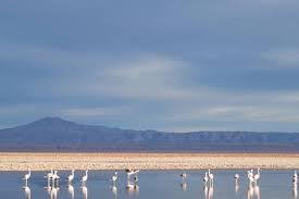 Toconao and Atacama Salt Lake