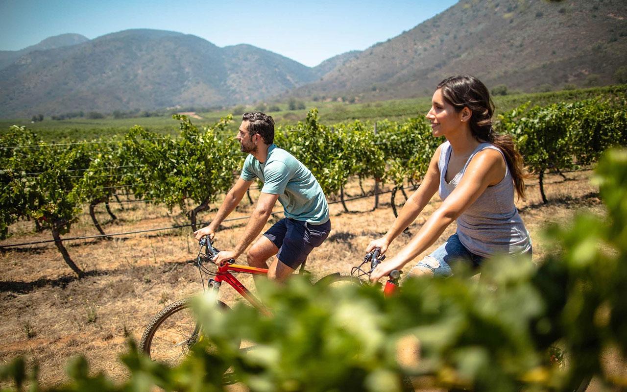 Veramonte winery