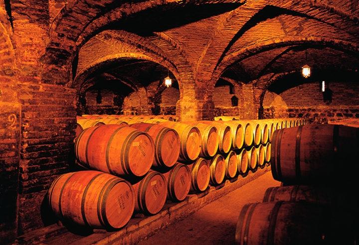 Pedal Bar Tour + Classic - Santa Rita Winery