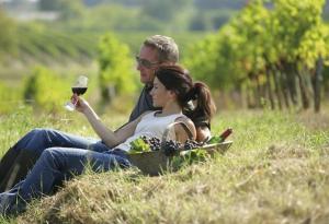 Picnic - Santa Rita Winery