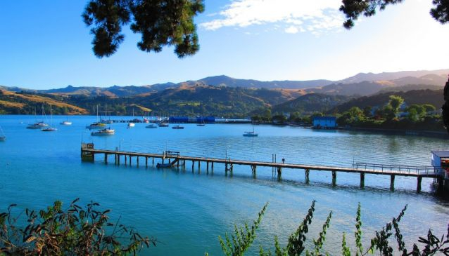The Wild Side of Akaroa