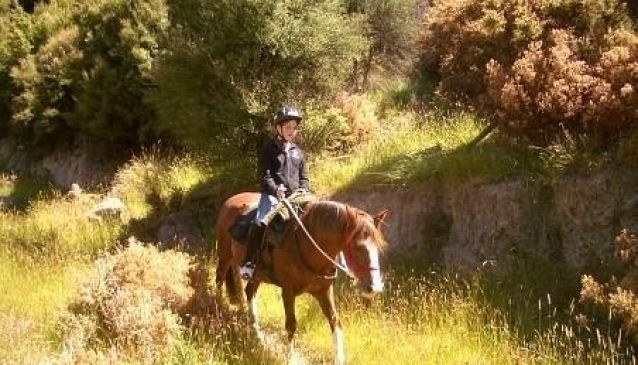 Otahuna Horse Riding