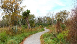The Styx Mill Conservation Reserve