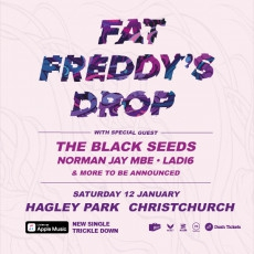 Fat Freddy's Drop - Live in Hagley Park