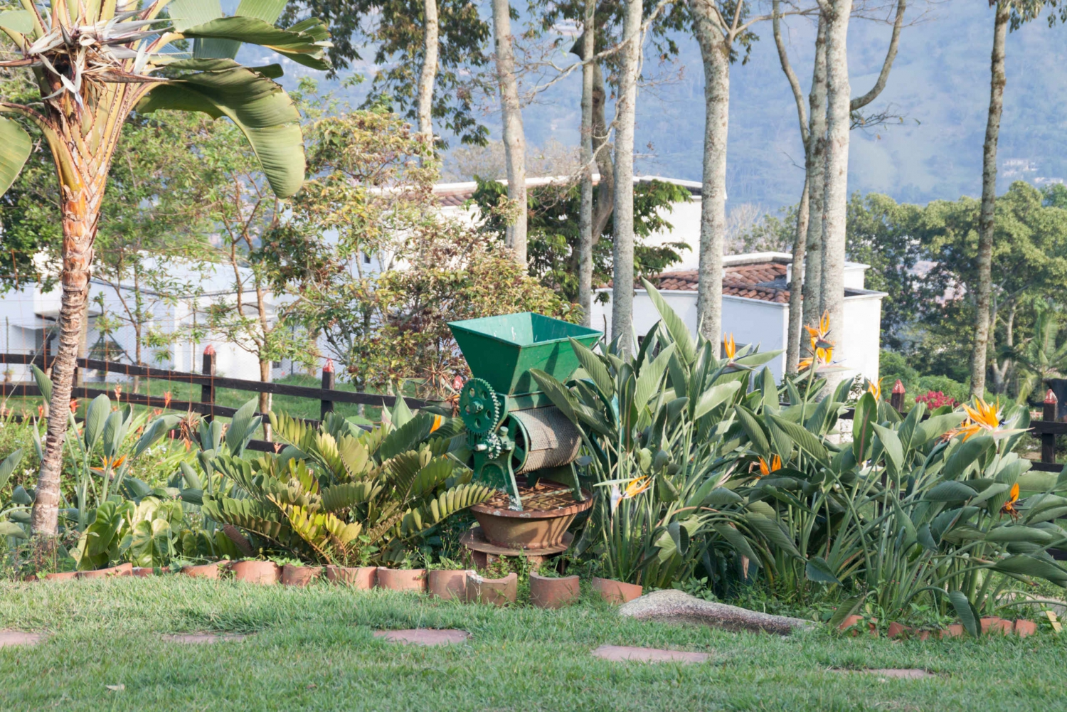 3-Day Coffee Region Tour from Medellin