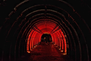 Bogota: Salt Cathedral Small-Group Tour with Entrance Ticket