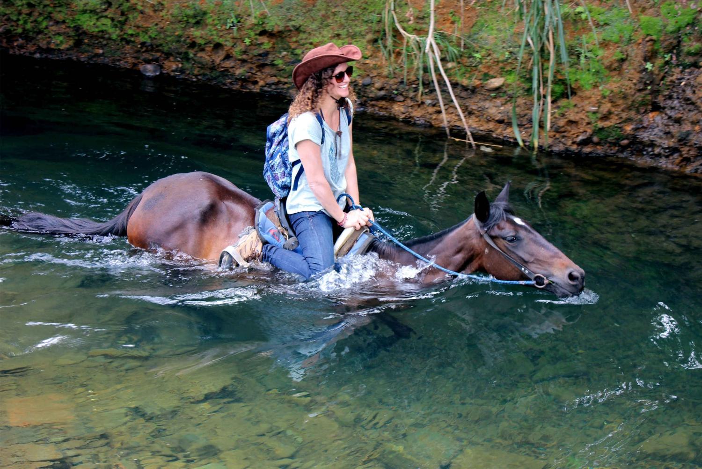 Cali: Afternoon of Nature Trails on Horseback