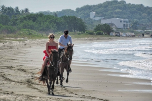 Cartagena: Beach Horse Ride and Colombian Horse Culture
