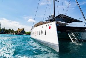 Cartagena: Rosario Islands Catamaran with Lunch and Snorkel