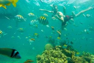 Cartagena: Snorkel, Mangroves and Playa Blanca Tour