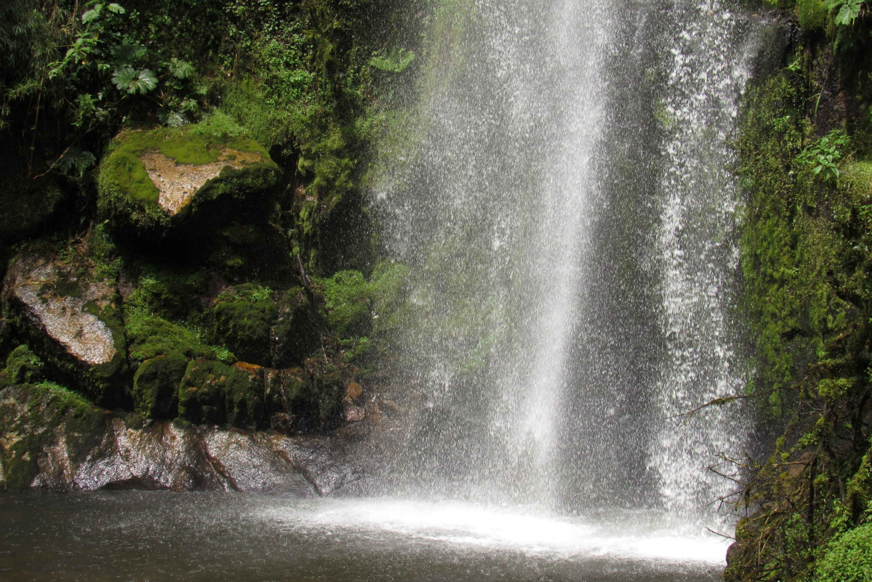 Choachi Waterfall Hike & Organic Food Tour