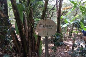 From Bogotá: La Coloma Coffee Farm Private Day Trip