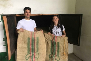 From Medellin: Day Trip to a Jardin Coffee Plantation