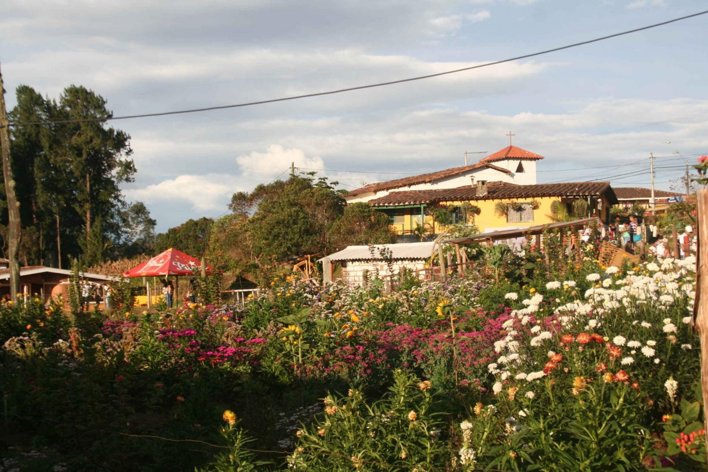 From Medellin: Flower Farm Tour