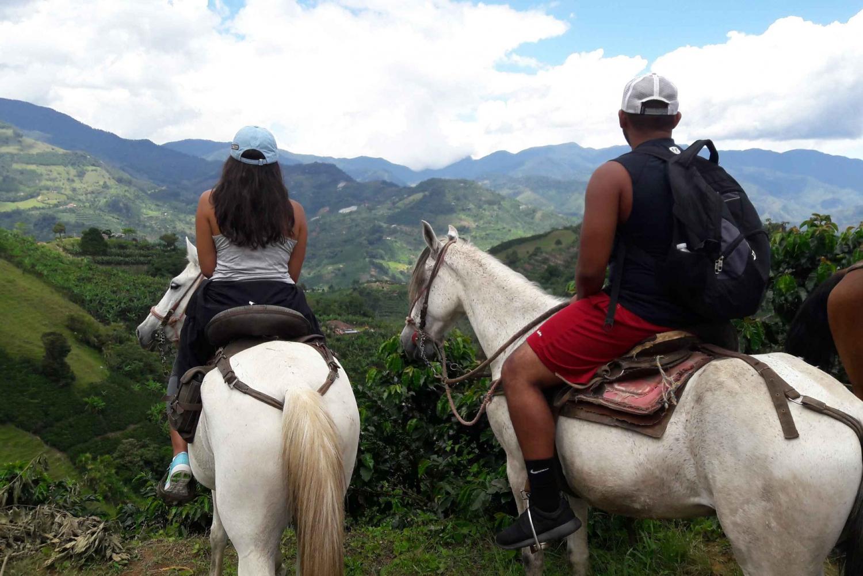 Horseback Riding in Medellin: Safe, Fun & Beautiful