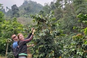Jardín: Horseback Ride with Coffee Villa and Waterfall
