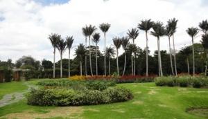 Jose Celestino Mutis Botanical Garden