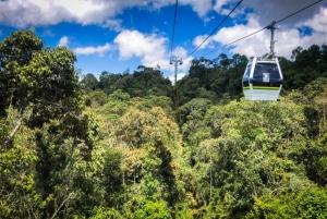 Medellín: Arví Park Hike