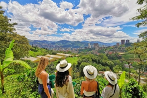 Medellín: Half-Day Coffee Plantation Tour