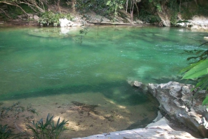 Rio Claro Jungle River: Private Tour from Medellín