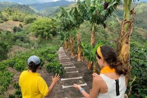 Salento: Coffee Farm Tour with Tasting