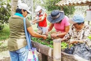 Salento: Coffee Tour at Finca El Ocaso