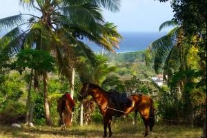 San Andres: Horse Riding Tour