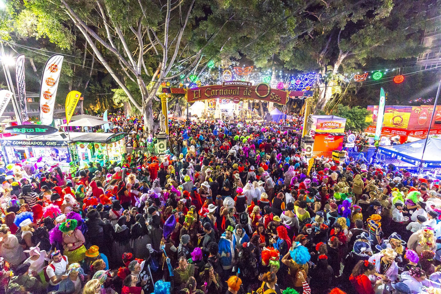 10 Things You Didn't Know About Carnival in Santa Cruz
