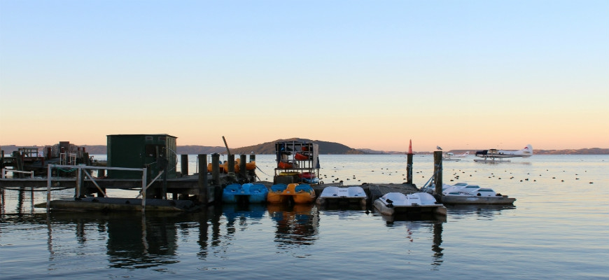 Getting To Rotorua