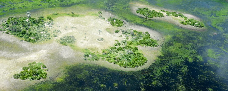 Okavango Delta & Panhandle