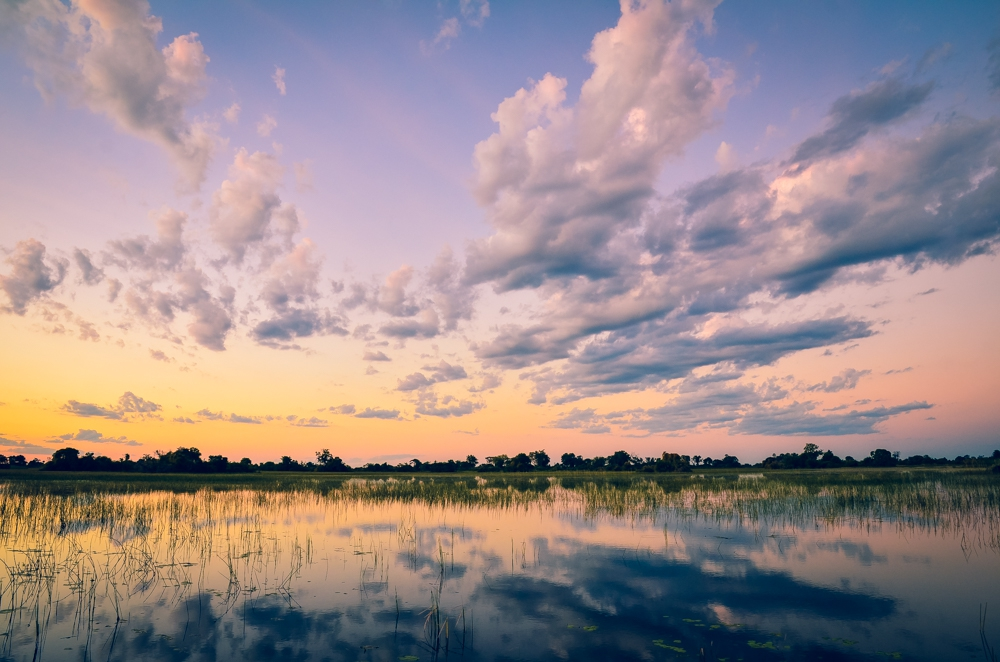 Best Places to see Wildlife in Botswana