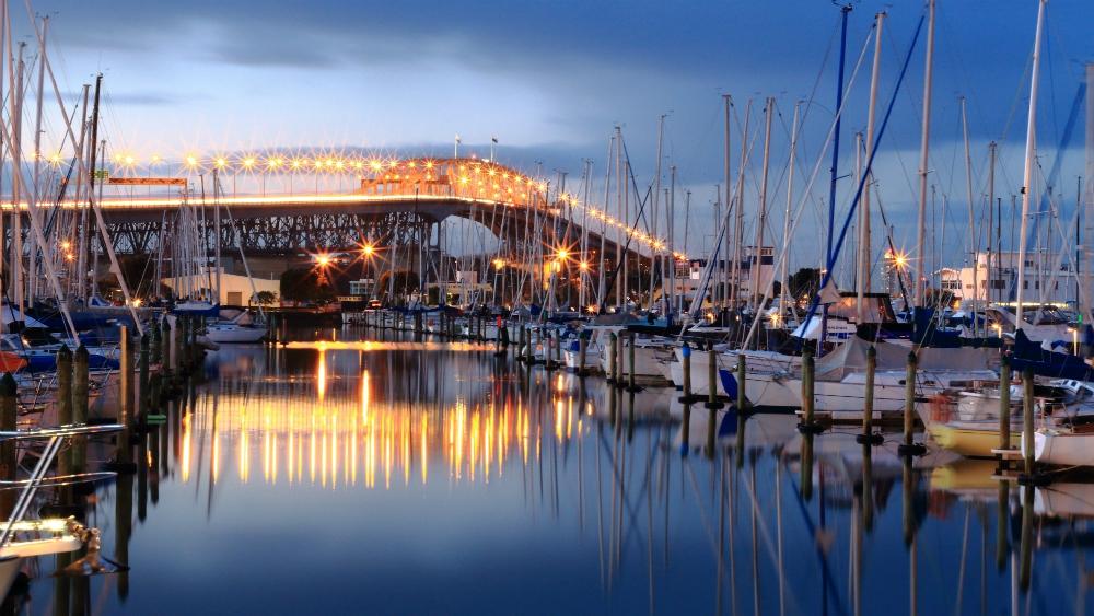 Photos of Auckland
