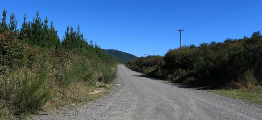 Rotorua Driving Distances