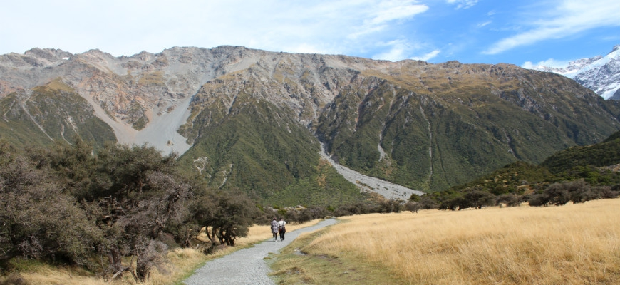 Top 10 New Zealand Walks