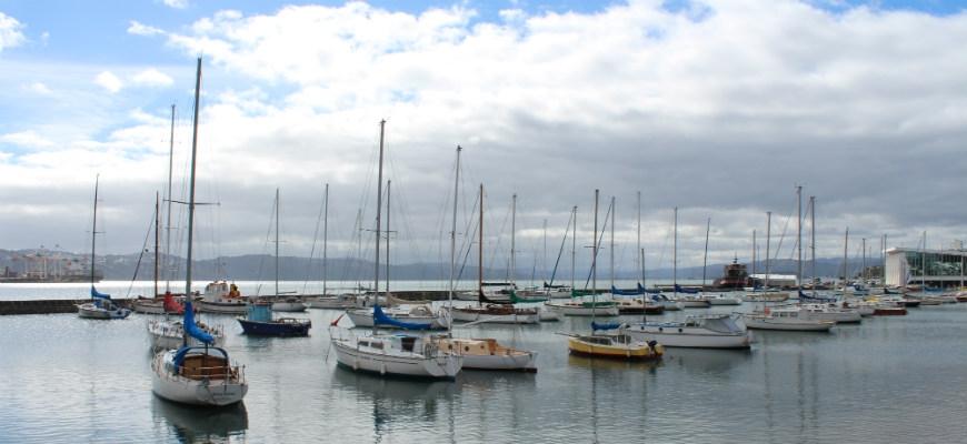 Wellington Climate