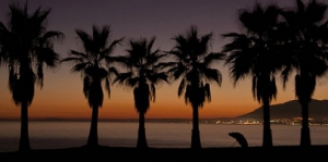 Faqs About Marbella My Guide Marbella