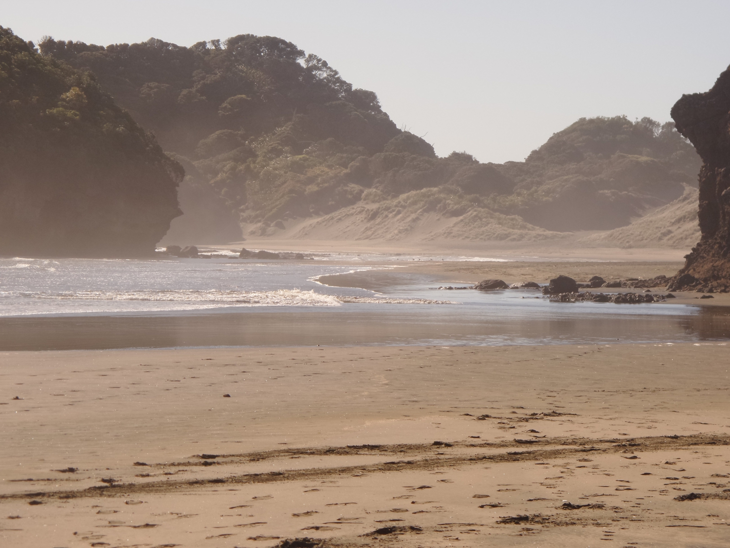 A Practical Guide to Visiting The Bethells Beach, West Auckland