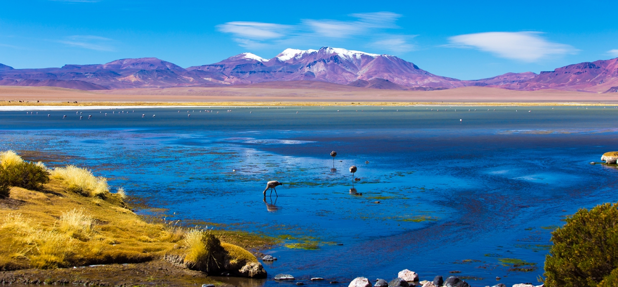 Attention: Atacama desert is awarded as the best romantic destination in South America