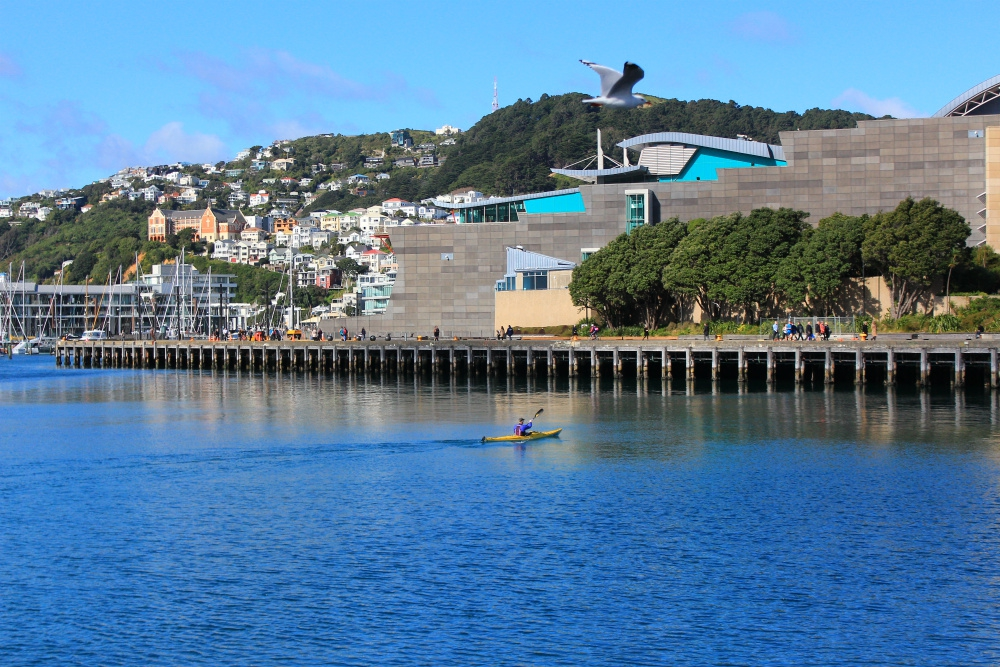 Best Museums in Wellington