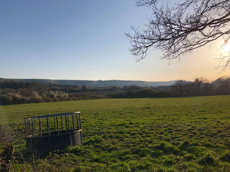 Gardens & Parks in Sussex