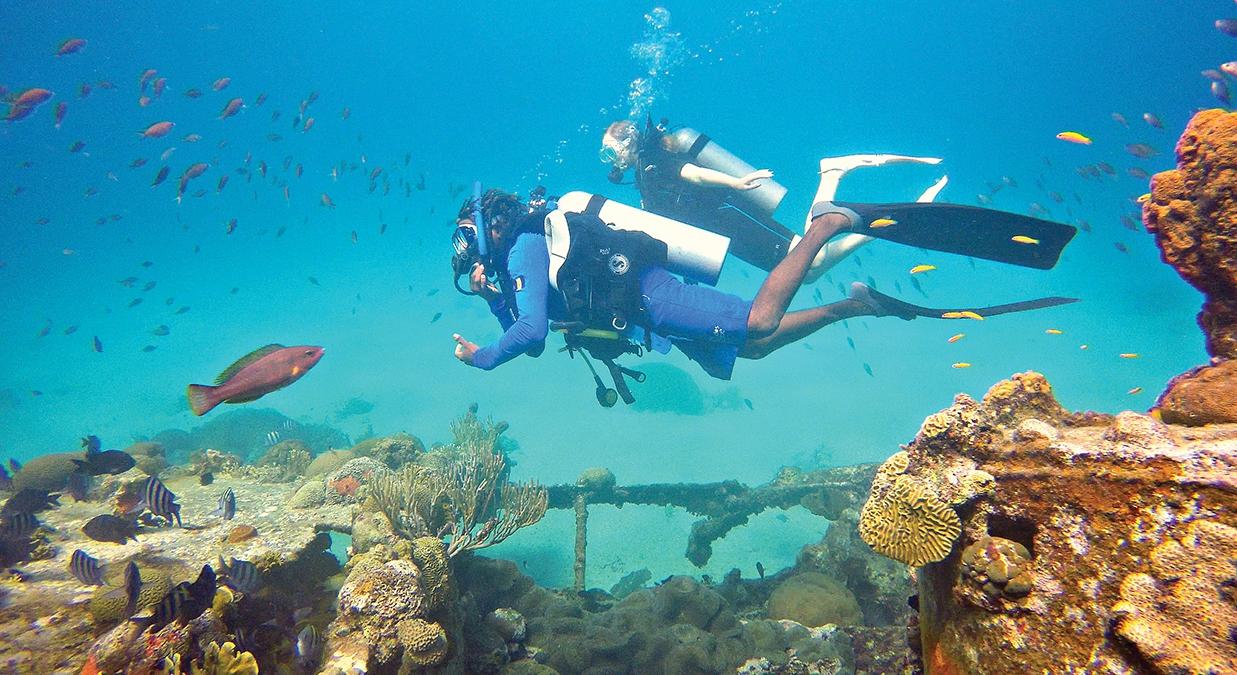 Get Reef Smart in Barbados