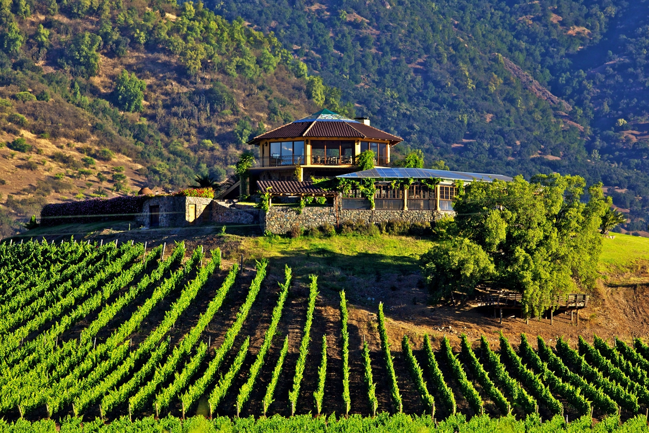 Getting to know the Wineries of Chile