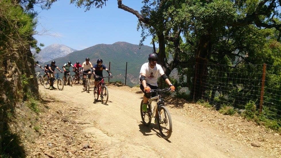 MTB Descent in Sierra de Las Nieves