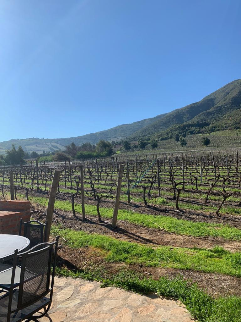 Not everything is wine! 5 tourist attractions of the Colchagua Valley